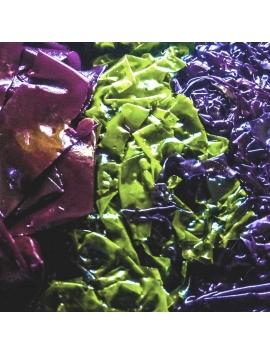 Tris di alghe fresche sotto sale Bord-a-Bord